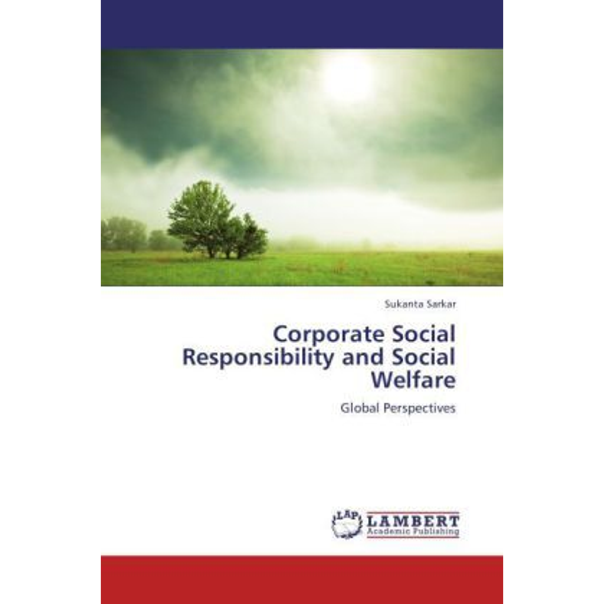 Corporate Social Responsibility and Social Welfare - Global Perspectives