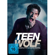 Teen Wolf-Staffel 6 (Softbox)