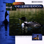 SOUNDS OF THE LOON