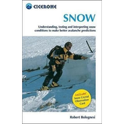 Snow: Assessing and Understanding Snow Conditions to Predict Avalanches Better