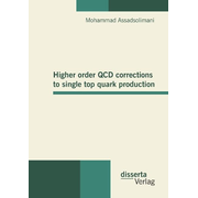 Higher order QCD corrections to single top quark production
