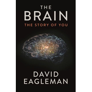 Allen & Unwin The Brain book Science & nature English Paperback 256 pages