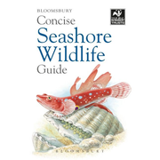 ISBN Concise Seashore Wildlife Guide