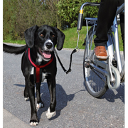 TRIXIE 1287 dog/cat lead Black, Silver Hands free lead