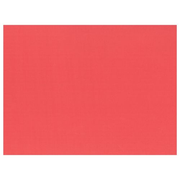 Papstar 84351 placemat Rectangle Red 100 pc(s)