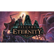 505 Games Pillars of Eternity PS4 Basic PlayStation 4
