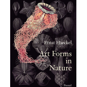 ISBN Art Forms in Nature