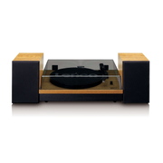 Lenco LS-300 Belt-drive audio turntable Black, Wood