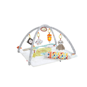 Fisher-Price GKD45 learning toy