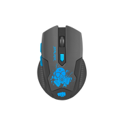 FURY Stalker mouse Right-hand RF Wireless Optical 2000 DPI