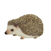 Vivid Arts Pygmy Hedgehog