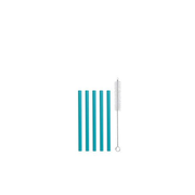 Strawganic 102115 reusable drinking straw Mint colour Glass, Stainless steel 5 pc(s)