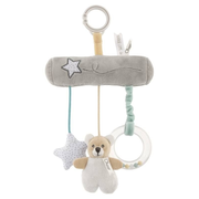 Chicco 09715-00 rattle