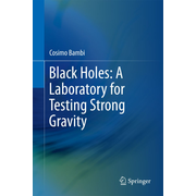 Black Holes: A Laboratory for Testing Strong Gravity