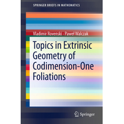Topics in Extrinsic Geometry of Codimension-One Foliations