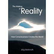 The Making of Reality - How Consciousness Creates the World