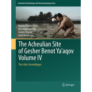 The Acheulian Site of Gesher Benot Ya'aqov Volume IV - The Lithic Assemblages