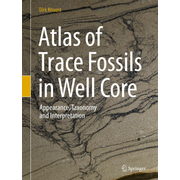 Atlas of Trace Fossils in Well Core - Appearance, Taxonomy and Interpretation