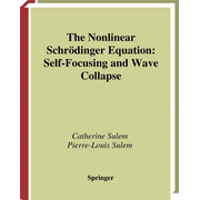The Nonlinear Schrödinger Equation - Self-Focusing and Wave Collapse