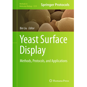 Yeast Surface Display - Methods, Protocols, and Applications