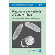 Diatoms in the wetlands of Southern Iraq