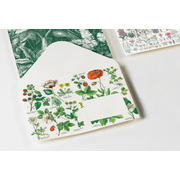 Botanical - Envelopes (C6)