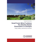 Small Scale Wind Turbines for Electric Power Generation in Ethiopia - Study, Viability, and Technical Evaluation