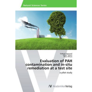 Evaluation of PAH contamination and in-situ remediation at a test site - a pilot study
