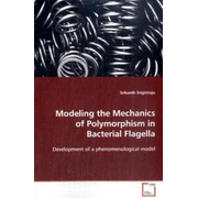 Modeling the Mechanics of Polymorphism in Bacterial Flagella - Development of a phenomenological model