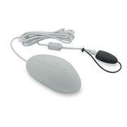 Secomp 18022812 mouse Right-hand USB Type-A 800 DPI