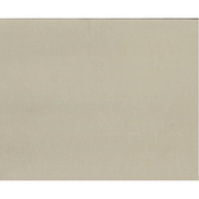 Silhouette CARDSTOCK-TAUPE card stock/construction paper 1 sheets