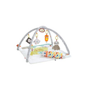Fisher-Price Perfect Sense Deluxe Gym Multicolour Baby gym