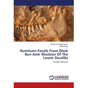 Ruminant Fossils From Dhok Bun Amir Khatoon Of The Lower Siwaliks