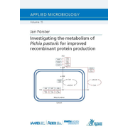 Investigating the metabolism of Pichia pastoris for improved recombinant protein production
