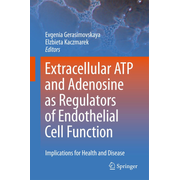 Extracellular ATP and adenosine as regulators of endothelial cell function - Implications for health and disease