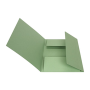 Biella 0170400.30, Conventional file folder, A4, Carton, Green, Portrait, 240 sheets