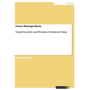 Social Security and Pension System in China