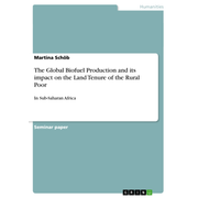 The Global Biofuel Production and its impact on the Land Tenure of the Rural Poor