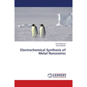 Electrochemical Synthesis of Metal Nanowires