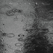 Voices from the Human Forest Create a Fugue of Imaginary Rain
