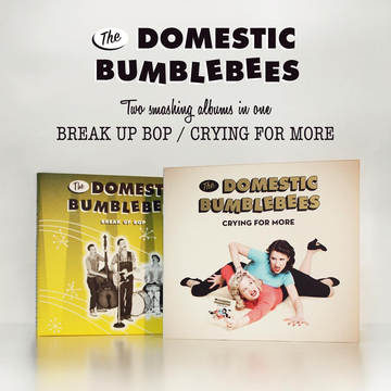 Domestic Bumblebees,The Break Up Bop/Crying For More