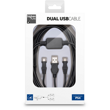 FLASHPOINT Bigben Interactive Dual USB Cable