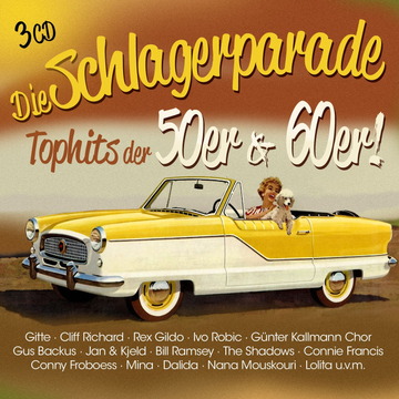 ZYX Music Die Schlagerparade - Top Hits