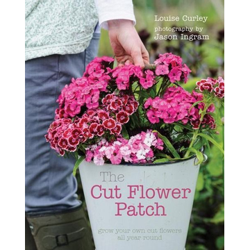 Curley, Louise CUT FLOWER PATCH