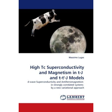 Lugas, Massimo High Tc Superconductivity and Magnetism in t-J and t-t'-J Models - d-wave Superconductivity and Antiferromagnetism in strongly correlated systems by a new variational approach