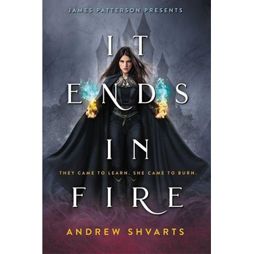 Shvarts, Andrew It Ends in Fire