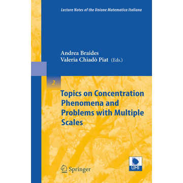 Springer Berlin Topics on Concentration Phenomena and Problems with Multiple Scales