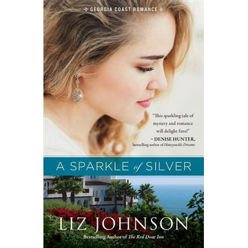 Johnson, Liz ISBN A Sparkle of Silver book English Paperback 368 pages
