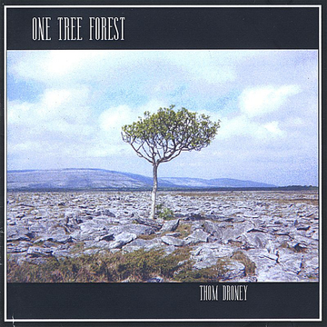 Thom Droney One Tree Forest