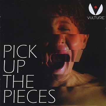 Vulture Pick Up the Pieces